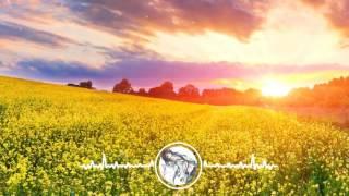 [Kara+Lyrics] WILDLIFE - Hoaprox x Bá Hưng - Nightcore (Original mix)
