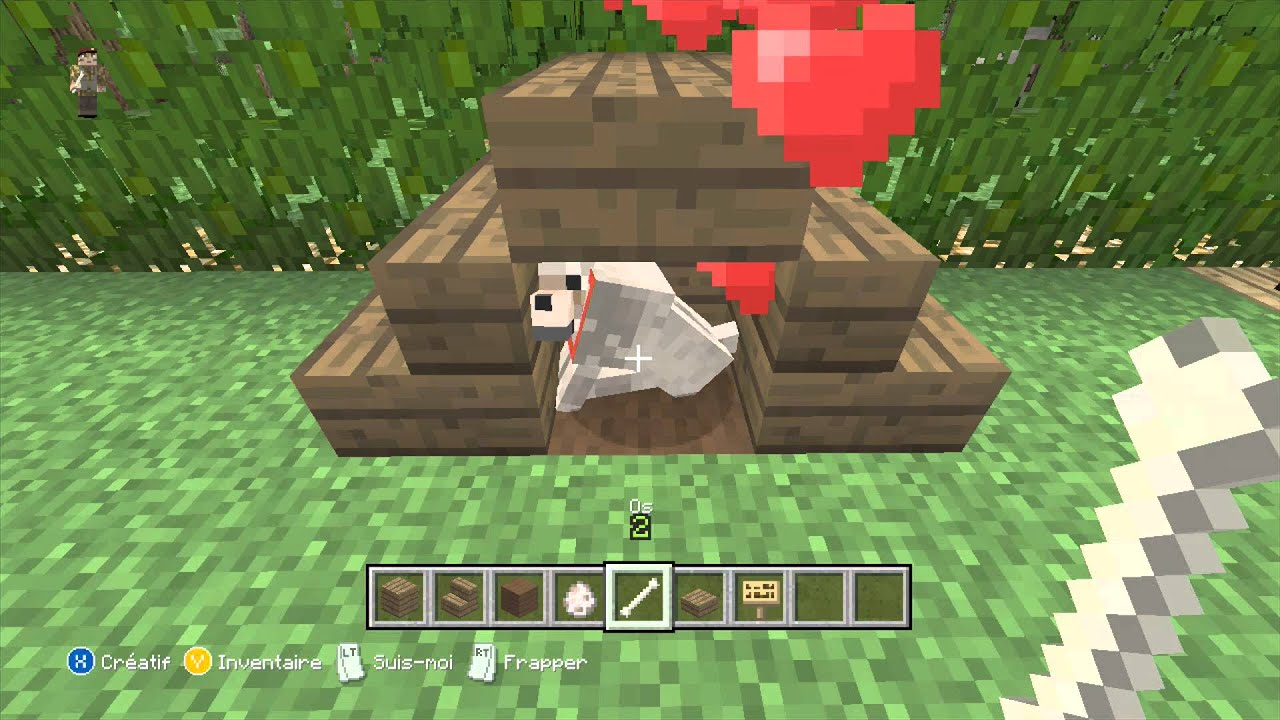 Ide Jardin Minecraft