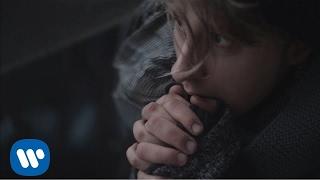 Piotr Ziola - Safari [Official Music Video]