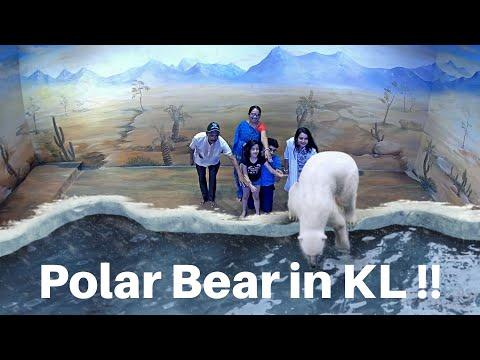 3D illusion Art Museum Kuala Lumpur - 01 - Air Land Sea I Mou Malaysia