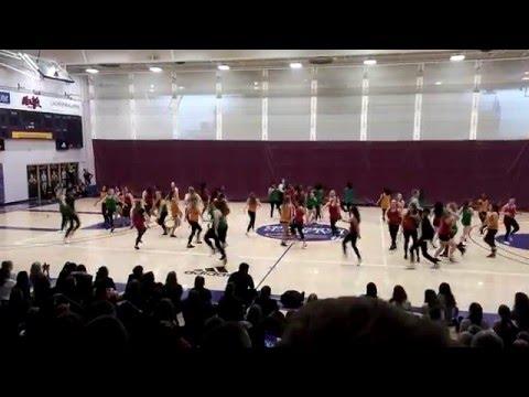 Wilfrid Laurier University Dance Showcase 2016 - Dancehall/ Soca