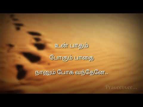Shenbagame Lovely Lyrics - Lyrics Video