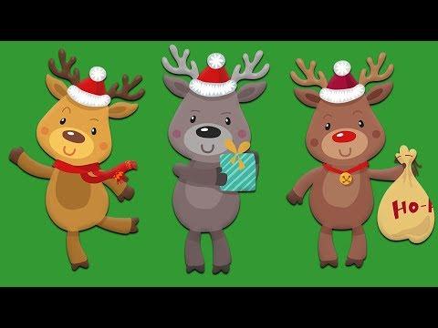 All Santa's Reindeer!  Names of all the Reindeer!