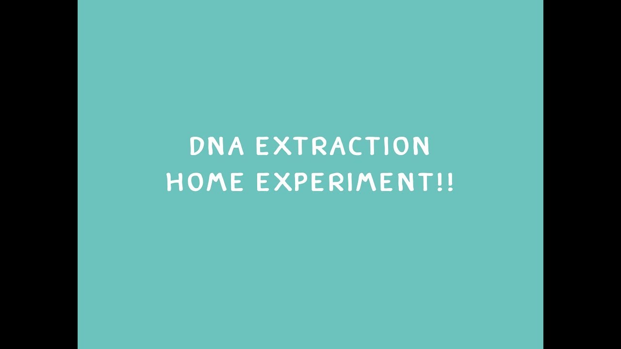 DNA extraction Homemade - YouTube