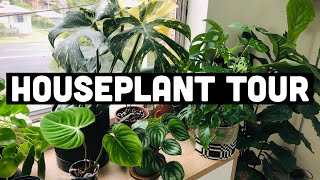 HOUSEPLANT TOUR MAY 2020 | MY 100+ PLANT COLLECTION