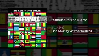"""Ambush In The Night"" - Bob Marley | Survival (1979)"