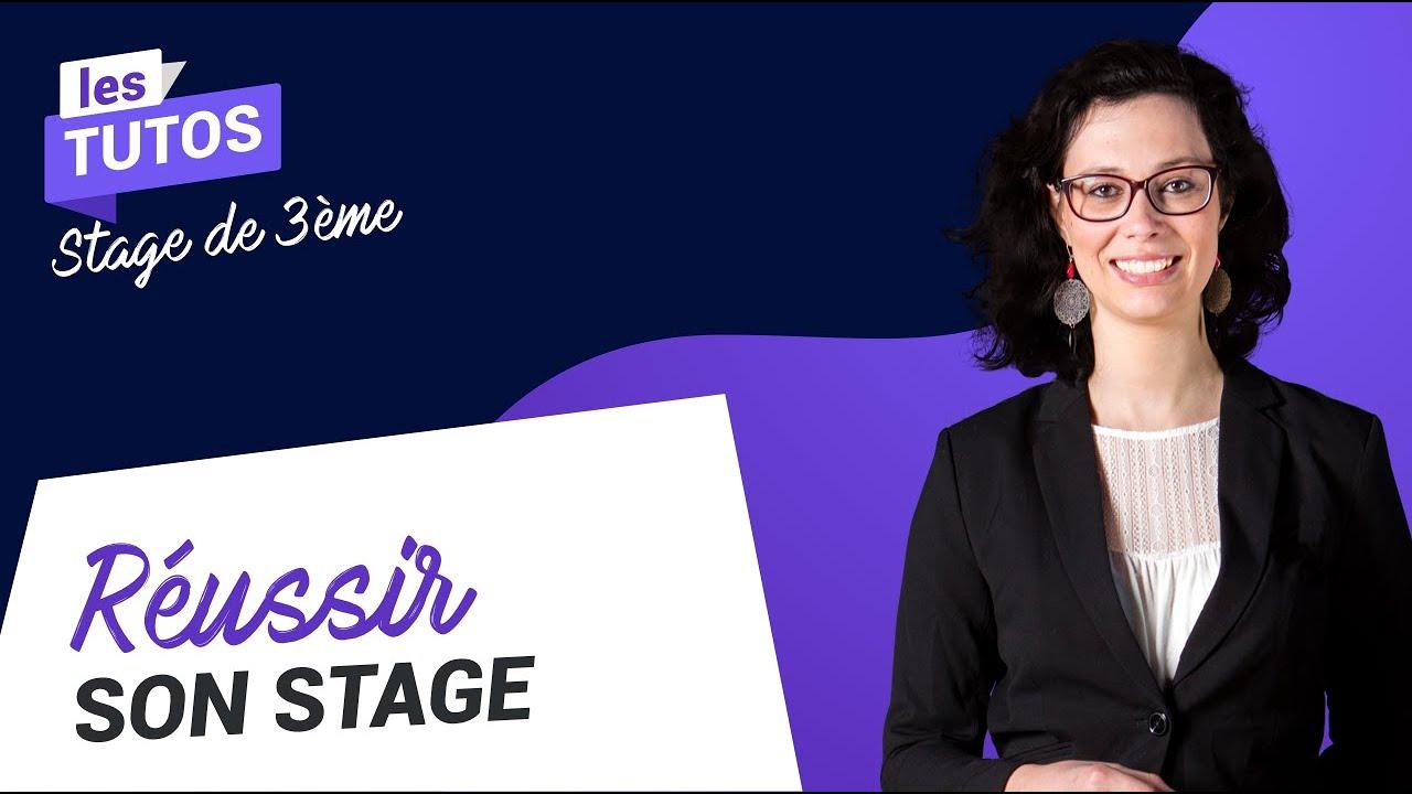 Stage De 3ème Comment Rédiger Son Rapport De Stage