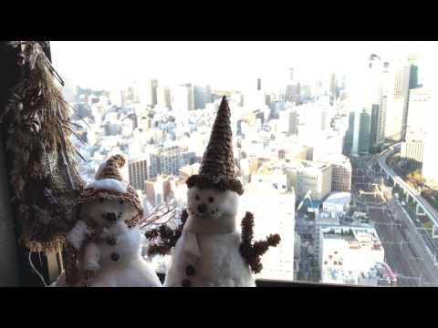 世界貿易センター40階展望台 World Trade Center Tokyo (40th Floor Observatory)