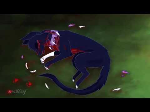 Бич коты воители мультфильм