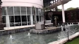 Обзор территории отеля Alva Donna World Palace 5*