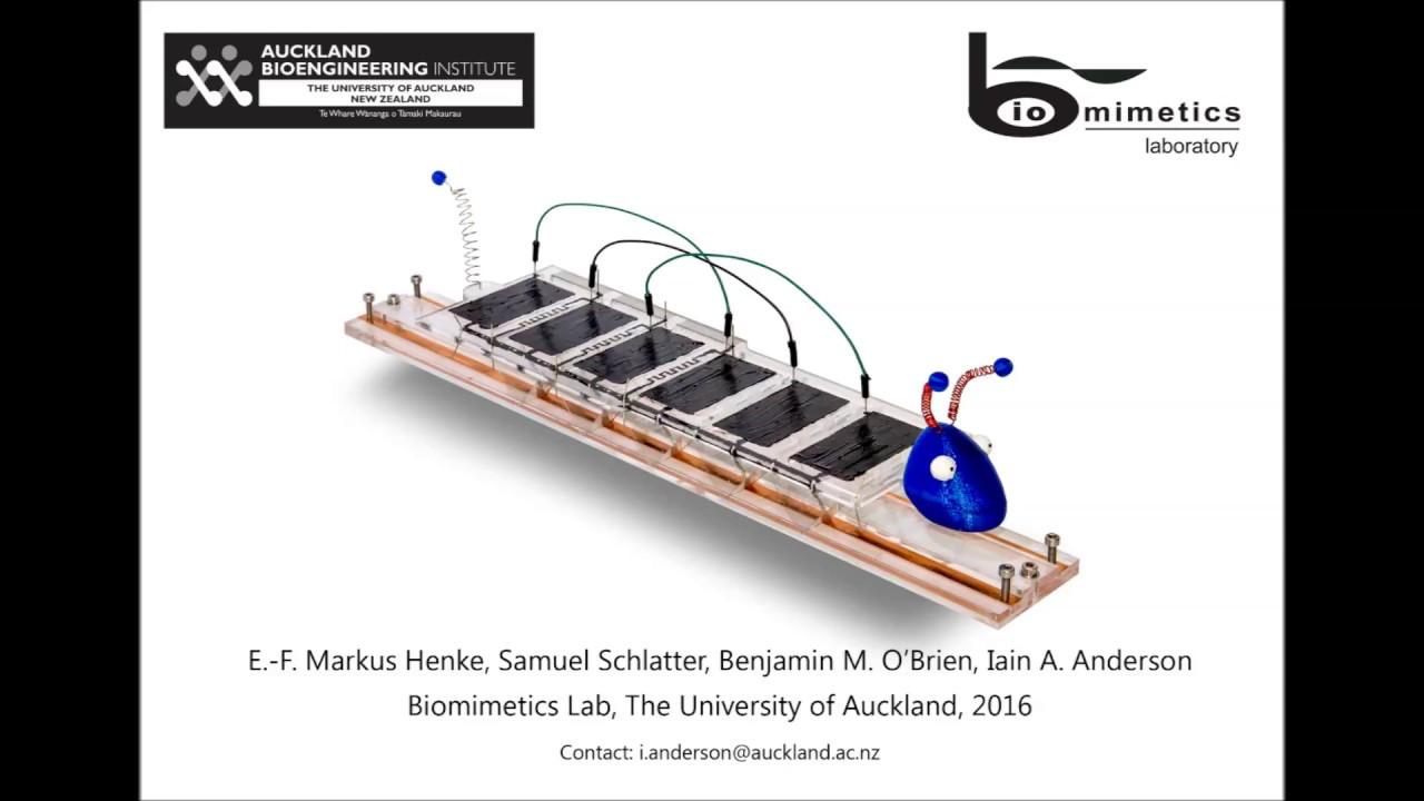 University waikato radiocarbon dating laboratorium
