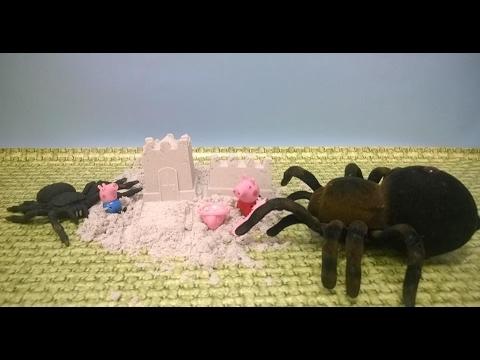 Bajka Świnka Peppa po polsku. Atak olbrzymich pająków!!!