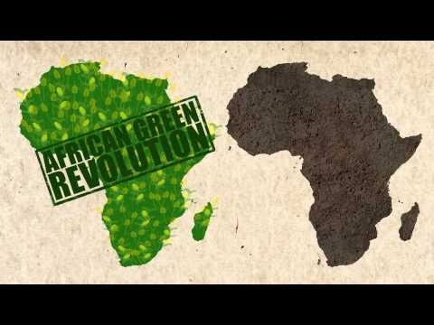An African Green Revolution