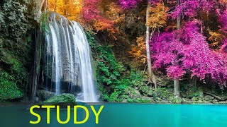 Study Music, Focus Music, Alpha Waves, Relaxing Study Music, Brain Power, Concentration Music, ☯1904