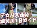 デカバス連発!遠賀川1日ガイド。