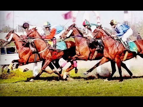 Horse race in Lahore race club
