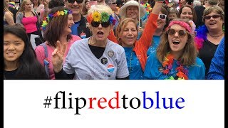 Why flip state legislatures from red to blue?
