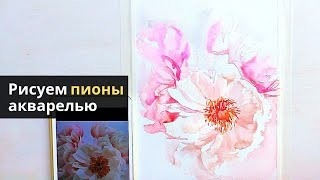 Рисуем нежные пионы акварелью — kalachevaschool.ru — Поэтапный урок с Вероникой Калачевой