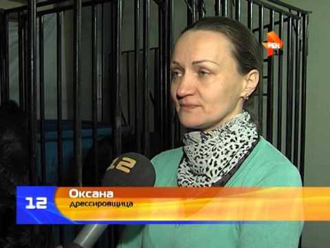Гастроли Московского цирка на воде «Аква-шоу» в Йошкар-Оле