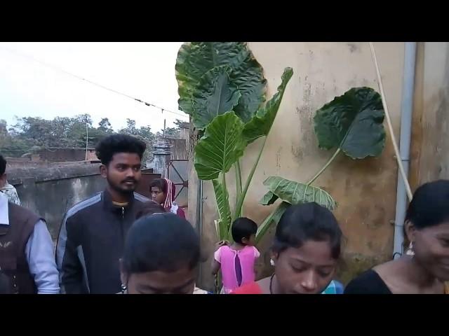Sohrai porob 2017 in girls hostel