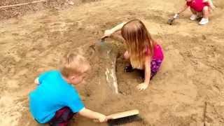 Digging dinosaur bones