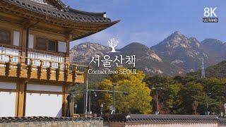 서울 산책 (Contact Free SEOUL)