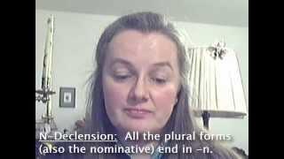 declension n declension learn german grammar