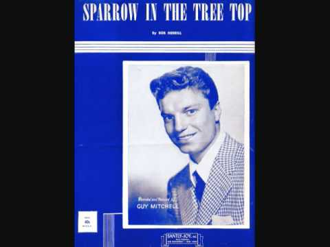 Guy Mitchell - Sparrow in the Tree Top (1951)