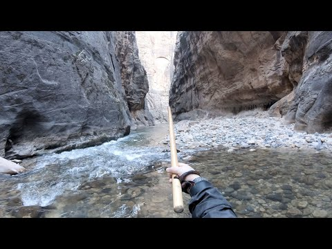THE NARROWS [FULL HIKE] - ZION NATIONAL PARK