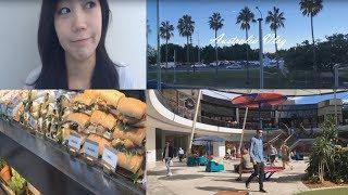 호주 유학생 Vlog #4 | 집순이 –  공부 – 홀로일주년.