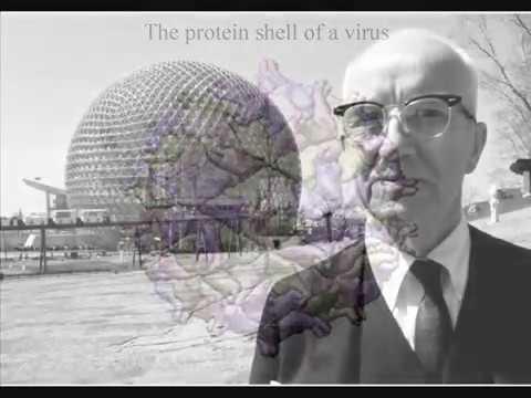 """""""Love is metaphysical gravity"""" R  Buckminster Fuller"""