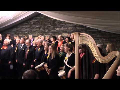 St. David's Day Concert at Cardigan Castle part 1