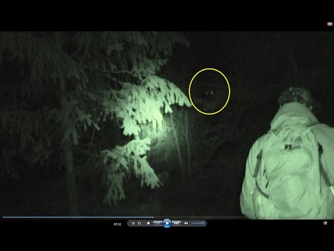 Bigfoot Expedition Trackway Eye Shine With Mike Hansen