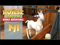 Our First Unicorn Foal!! • Horse Haven - Episode #141