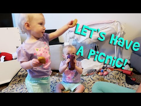 TWINS HAVE AN INDOOR PICNIC! (Day 581)