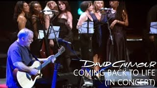 David Gilmour - Coming Back to Life (In Concert)