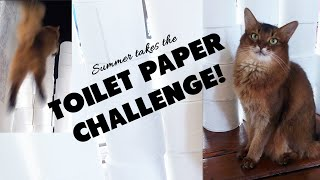 SUMMER TAKES THE TOILET PAPER CHALLENGE! Cat Vs. Toilet Paper  Who Wins?