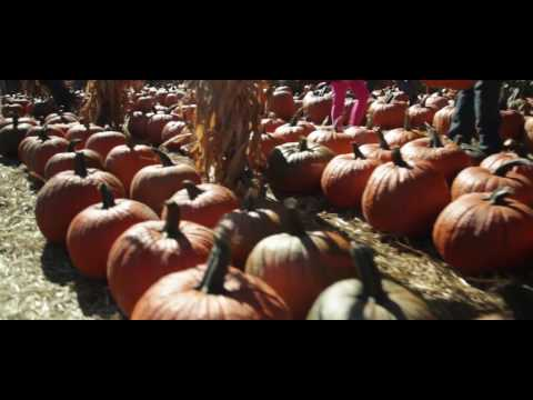 2016 Becker Farms Sizzle ReelOctober