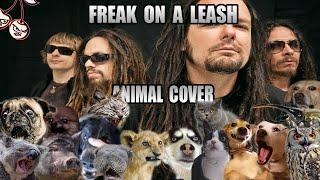 Korn  Freak On A Leash (Animal Cover)
