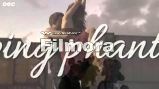 Conchita Wurst - Pure (Lyric Video)
