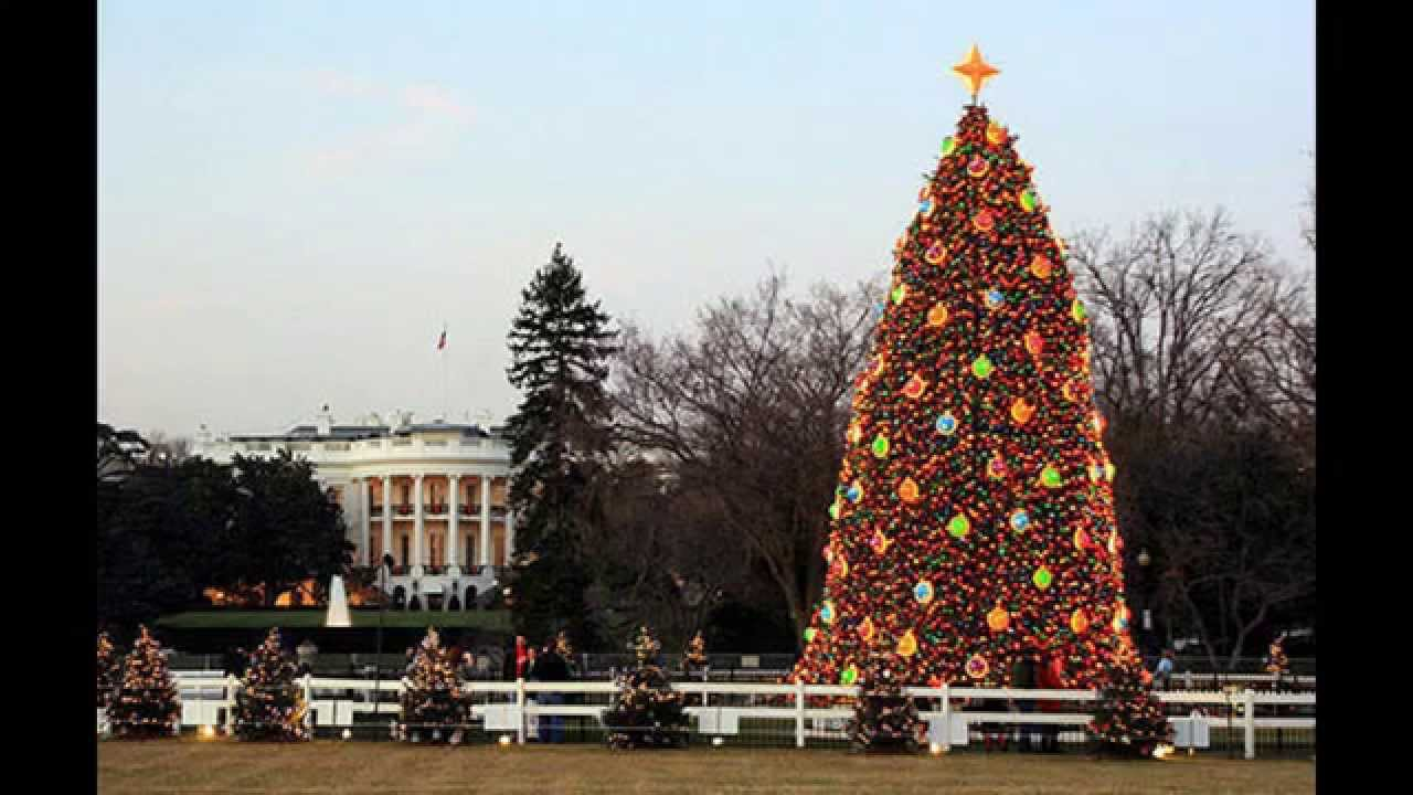 white house christmas tree decorations - YouTube