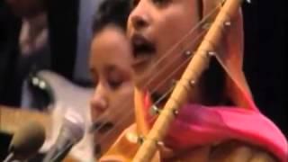 Mauritania Music w  Ooleya Mint Amartichitt   Doc