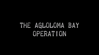 The Agloloma Bay Operation: America's First Amphibious Landing of World War II