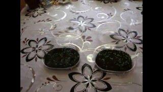 Выращивание клубники из семян.  Эксперименты.  Способы посадки(Это видео о выращивании клубники из семян. Экспериментальные посадки способами под снег и на снег., 2016-01-31T07:35:21.000Z)