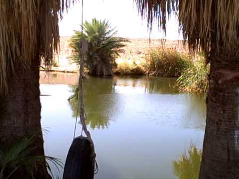 Natural Desert Oasis(Southern California) - YouTube