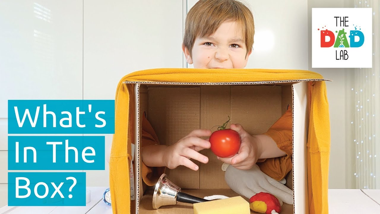 What's in the BOX?   Kids Sensory Challenge - YouTube