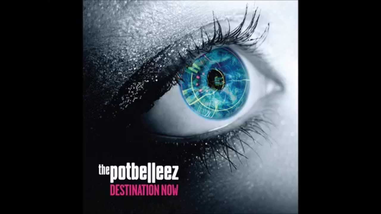 the potbelleez from the music