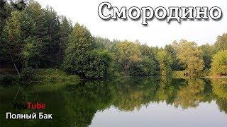 видео Зелёное озеро в Лужском районе