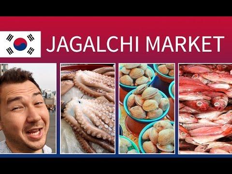 Jagalchi Fish & Seafood Market in Busan South Korea