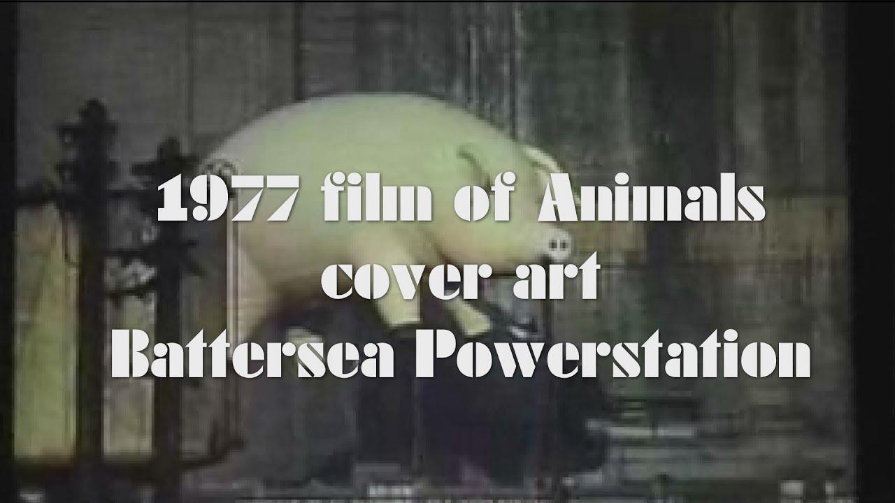 Pink floyd animals - Pink Floyd 1977 Film Of Animals Cover Art Shooting